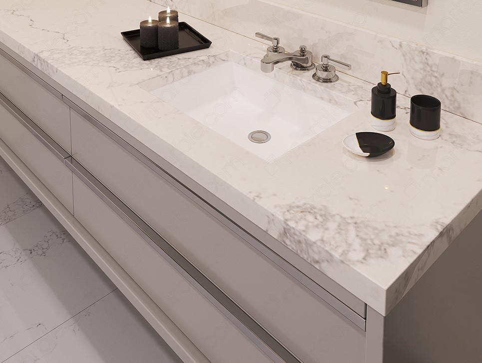 Bathroom with black accessories on white quartz