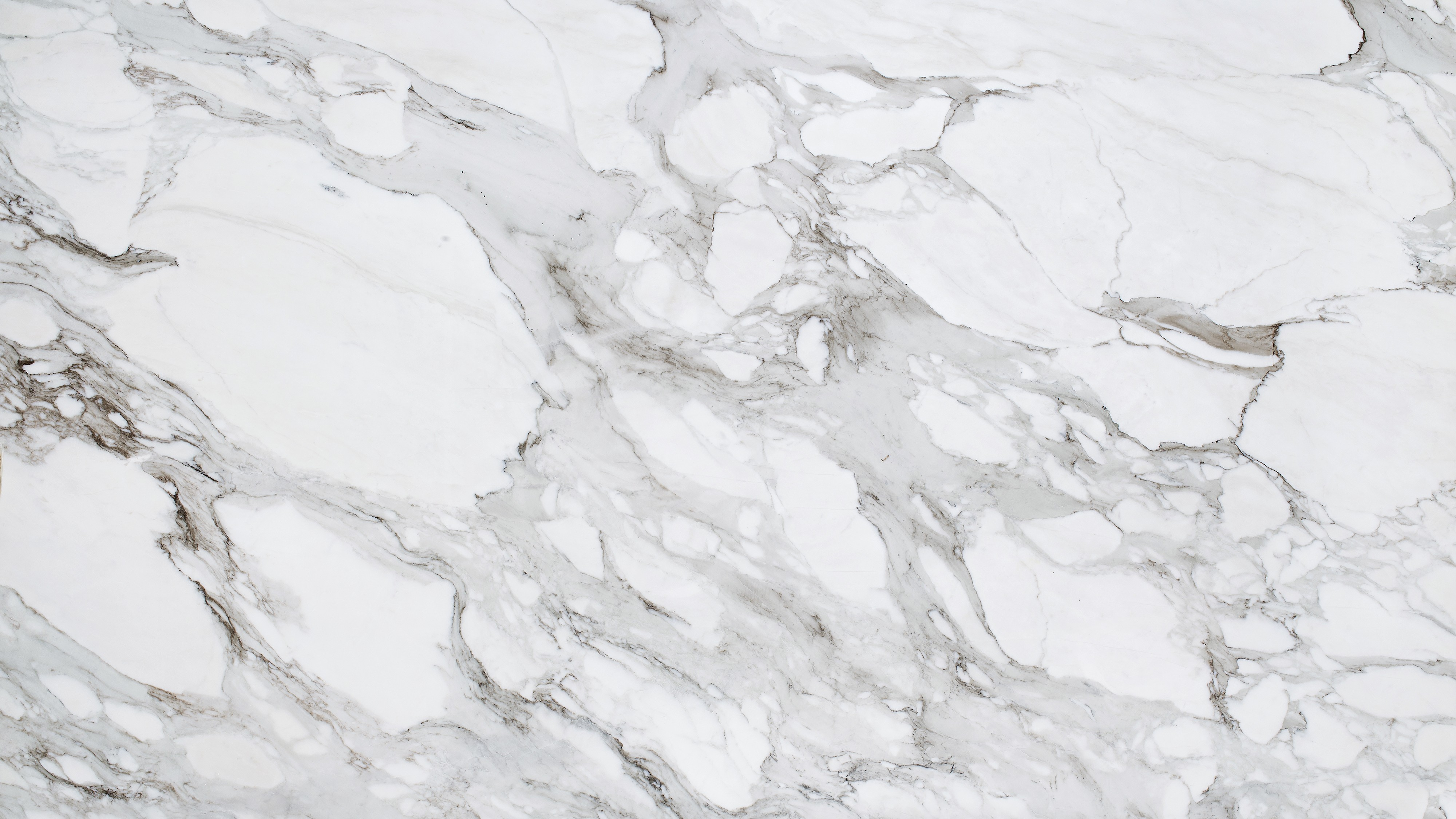 The Story Behind Calacatta Marble image