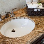 Rain Forest Brown Marble Bathroom Countertop | Marble.com