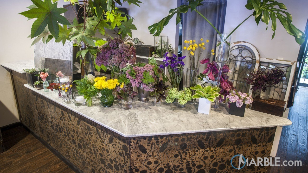 Statuario Marble Coffee and Flower Shop Countertops | Marble.com