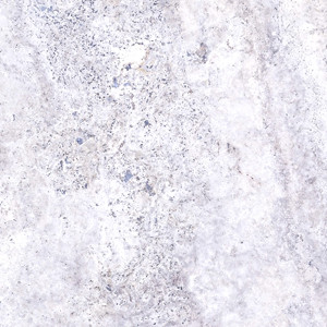 Silver Travertine image