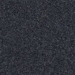 Black Impala image